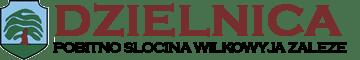 Dzielnica - Pobitno Wilkowyja Załęże Słocina